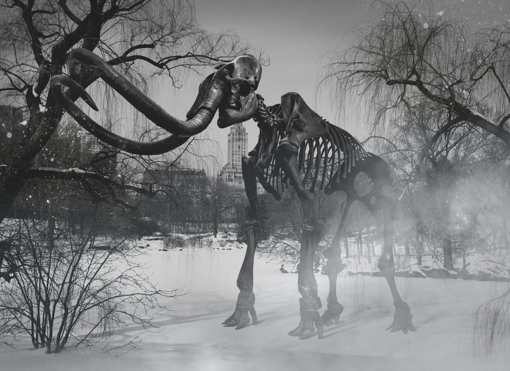 mamut-juanmi-marquez